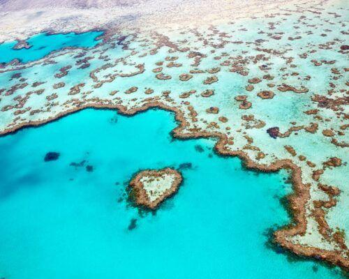 Queensland-coral-cove-location-(5)